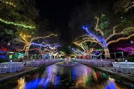 zoo lights houston prices txu energy presents zoo lights at the houston zoo the courier