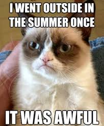 1st Of The Month Meme - memes about the first day of summer because there s no turning back
