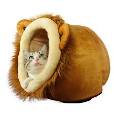 small house dogs house flashing picture more detailed picture about pet cat beds