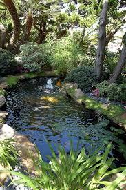 Backyard Fish Ponds by 437 Best Small Garden Ponds Images On Pinterest Garden Ideas