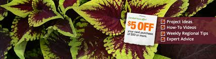 when is home depot spring black friday start garden club the home depot garden club the home depot