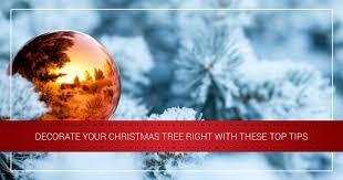 news tips tricks u0026 deals on led christmas lights u2013 the christmas