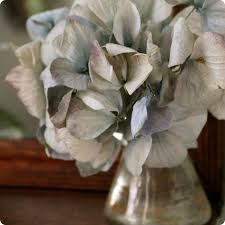 Dried Hydrangeas Made With Love Drying Hydrangeas U2013 Design Sponge