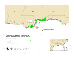 Gulf Of Mexico On Map by What U0027s Killing The Gulf Of Mexico U0027s Dolphins Mnn Mother