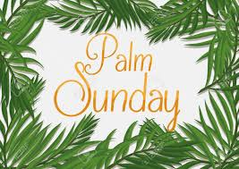 palm branches for palm sunday palm branches surrounding golden palm sunday text on white