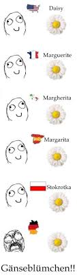 German Language Meme - it s just german funny pictures