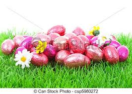 pink easter eggs pink easter eggs on grass white background stock photo search