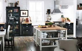 fancy clean ikea kitchen cabinets greenvirals style