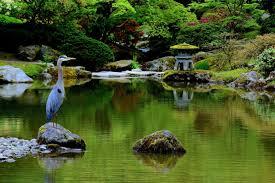native plants of japan seattle japanese garden