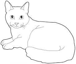 coloriage chat à colorier dessin à imprimer projets à essayer