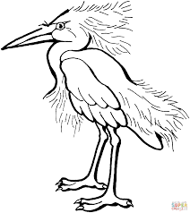 snowy egret coloring page free printable coloring pages