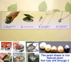 pearl wish necklace images Sale popular gift one box turtle pendant wish pearl necklace set a jpg