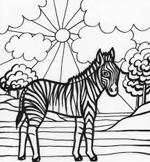 zebra coloring pages printable kids animals pictures to color