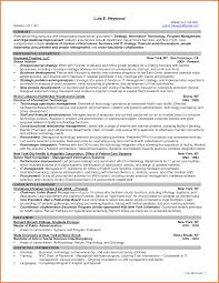 Sample Resume Information Technology by Information Technology Manager Resume Free Resume Example And