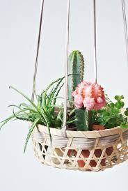 best 25 diy hanging planter ideas on pinterest hanging plants