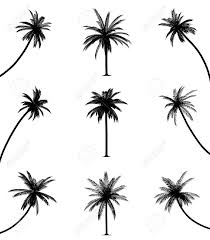 493 palm tree cutout cliparts stock vector and royalty free palm