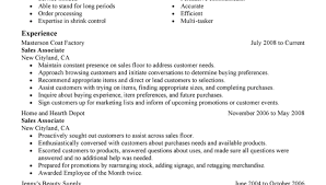 Home Depot Resume Sample by Free Fill In Resume Forms Sales Associate Sales Resume Example