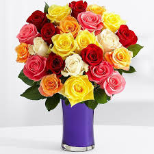 color roses multi color roses gifts