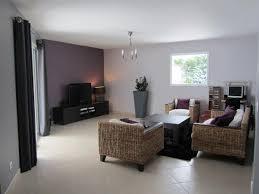 cuisine mur aubergine idee deco salon gris et marron 8 mettre uen couleur sobre au