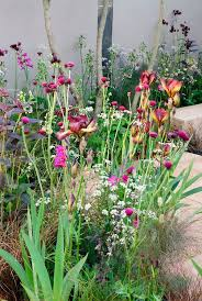 colored theme garden with achillea helenium crocosmia