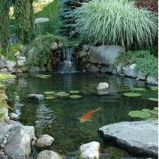 Aquascape Pond Pumps Aquascape Pond And Pondless Kits Aquascapeny