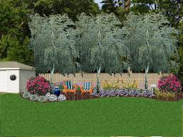 Backyard Ideas For Privacy Astonishing Decoration Landscaping Ideas For Privacy Agreeable