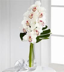 orchid bouquet charismatic luxury orchid bouquet royal fleur florist larkspur