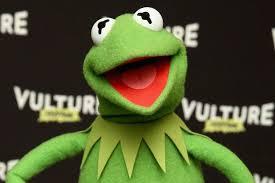 Kermit Meme Images - 13 best evil kermit the frog memes photos