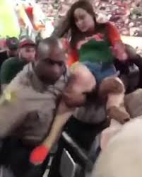 Video Shows Miami Police Officer Punching An Unruly Fan Daily Mail
