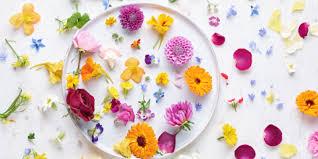 edible flowers for sale maddocks farm organics buy edible flowers online