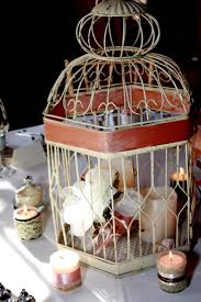 beautiful ideas for using bird cages archive love limes
