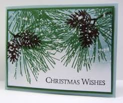 153 best cards ornamental pine images on