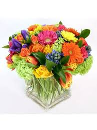 Frugal Flowers - 9 best everyday florals images on pinterest frugal flowers