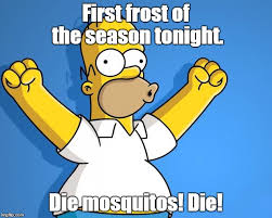 Mosquito Memes - woohoo homer simpson first frost of the season tonight die
