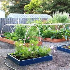 Backyard Garden Ideas Raised Backyard Garden Raised Backyard Vegetable Garden Backyard