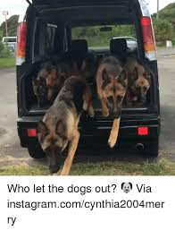 Who Let The Dogs Out Meme - 25 best memes about let the dogs out let the dogs out memes