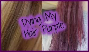 colour purple jerome russell punky colour plum review purple hair journey