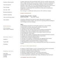 attractive marketing data analyst resume template featuring areas