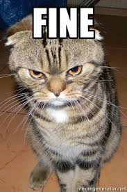 Angry Meme Cat - 20 laughable angry cat meme sayingimages com