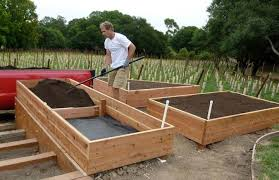 growing your own fresh vegetables how to build a house