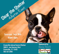 clear the shelter day set for september 10 all pet adoptions are