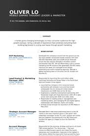 Digital Media Resume Examples by Vp Marketing Resume Samples Visualcv Resume Samples Database