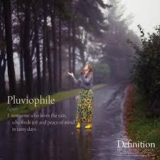 quote definition noun definition 02 pluviophile u2013 elou carroll
