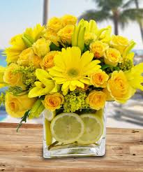 Flowers In Bradenton Fl - citrus sunshine floral arrangements lemons calendar beneva