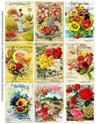 vintage seed packets ornamental flowering plants digital sheet seed catalog