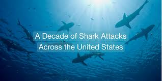 Florida Shark Attack Map by How To Avoid Becoming Shark Bait A Decade Of Shark Attacks