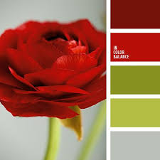 Colors That Go With Red 23 Best Red And Green Images On Pinterest Colors Red Green And