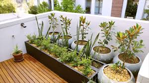 how to identify good quality of gardening supplies rooftop