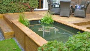 raised pond right next to my herb garedn that is in burried pots