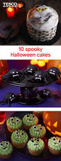 Cool Halloween Cake Ideas by Best 10 Spider Cake Ideas On Pinterest Halloween Cakes